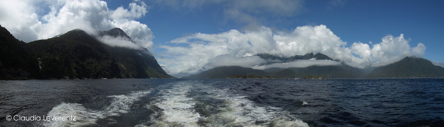 Panoramablick im Doubtful Sound