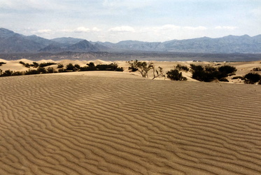Death Valley - Sand Dunes